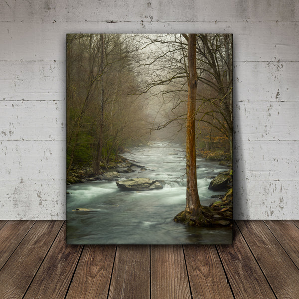 canvas wall art of great smoky mountain national park