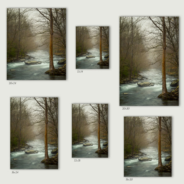 Smoky Mountain Stream Canvas