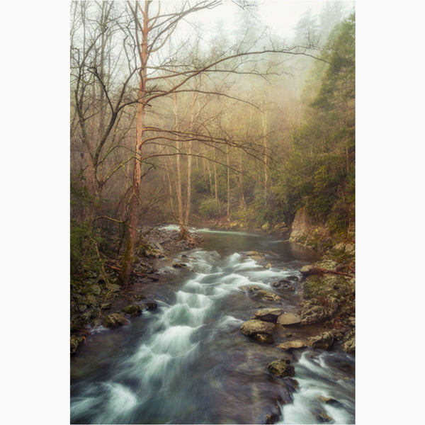 sunrise on little river in the smoky mountains