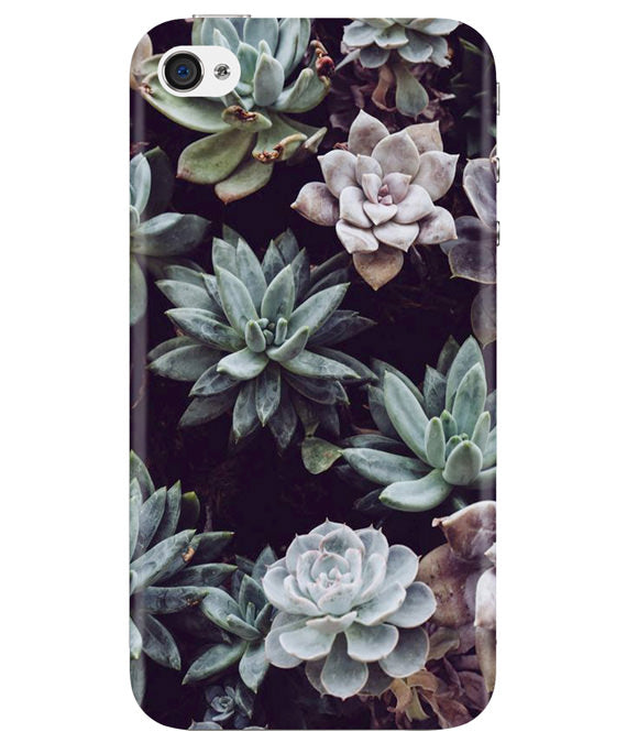 Desert Bloom iPhONE 4 Cover