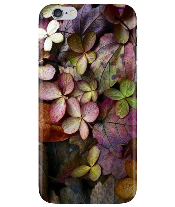 Fall Splendor iPhONE 6PLUS Cover