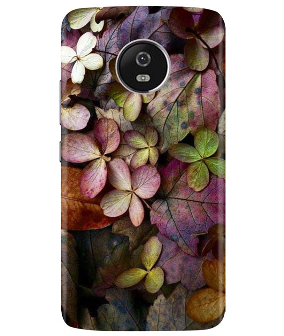 Fall Splendor Moto G5 Plus Cover