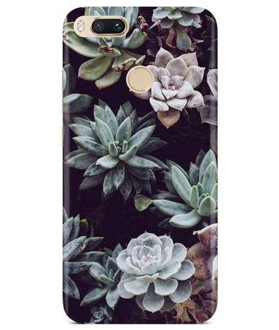 Desert Bloom Redmi A1 Cover