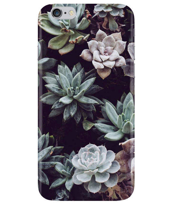 Desert Bloom iPhONE 6PLUS Cover