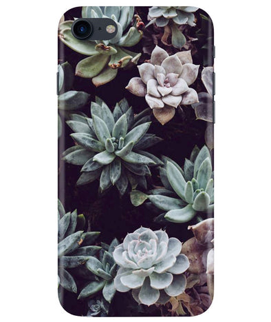 Desert Bloom iPhONE 8 Cover