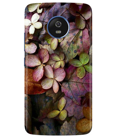 Fall Splendor Moto G5 Cover