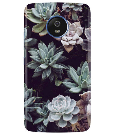 Desert Bloom Moto G5 Cover