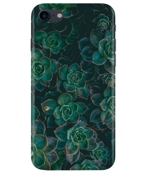 Envy Succulent iPhONE 8 Cover