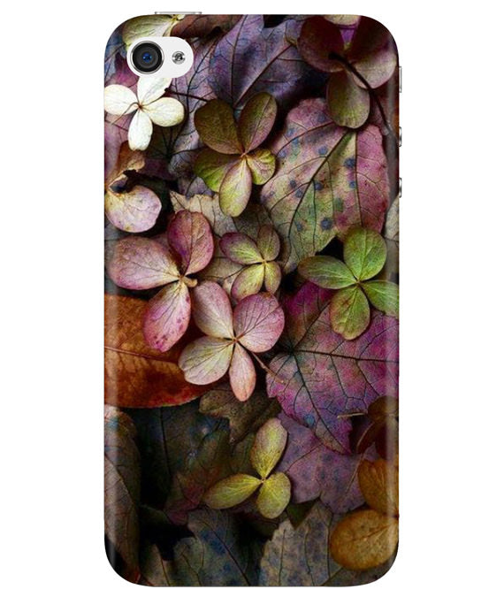 Fall Splendor iPhONE 4 Cover