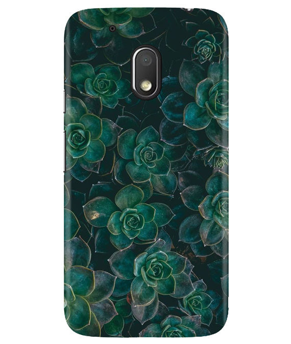 Envy Succulent Moto G4 Play Cover