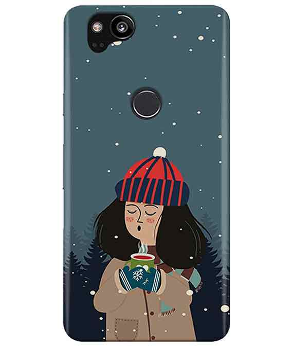 Winter Charm Google Pixel 2 Cover