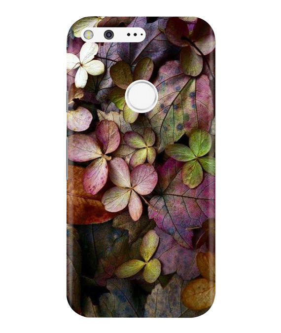 Fall Splendor Google Pixel Cover