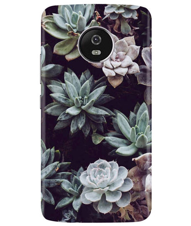 Desert Bloom Moto G5 Plus Cover