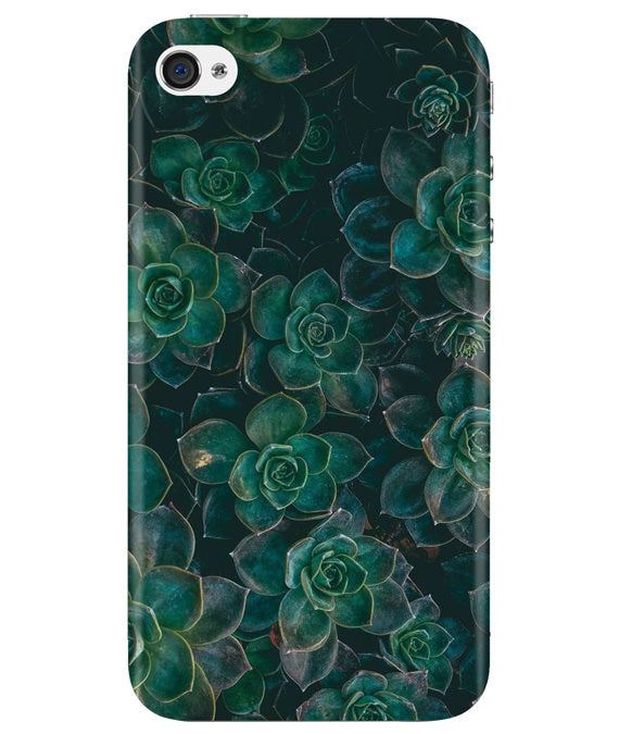 Envy Succulent iPhONE 4 Cover