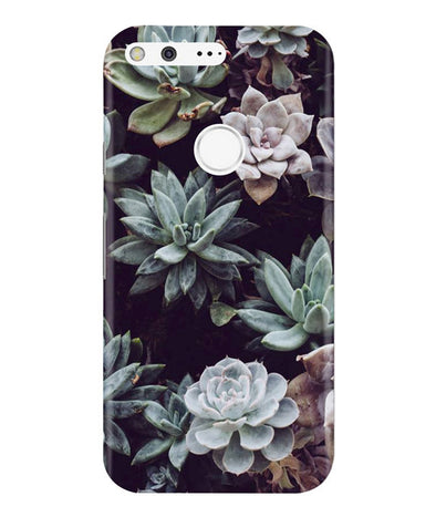 Desert Bloom Google Pixel Cover