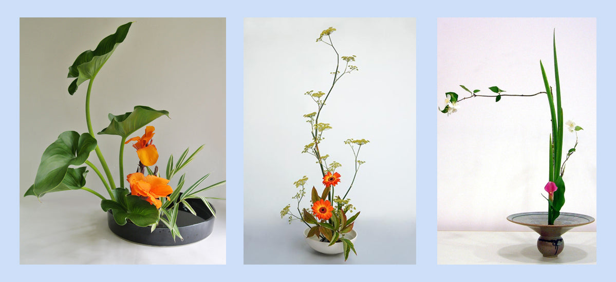 Ikebana Sustainable Mindful Mindfulness