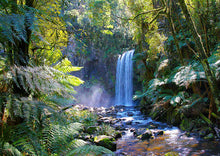 Waterfall, Otways Rainforest