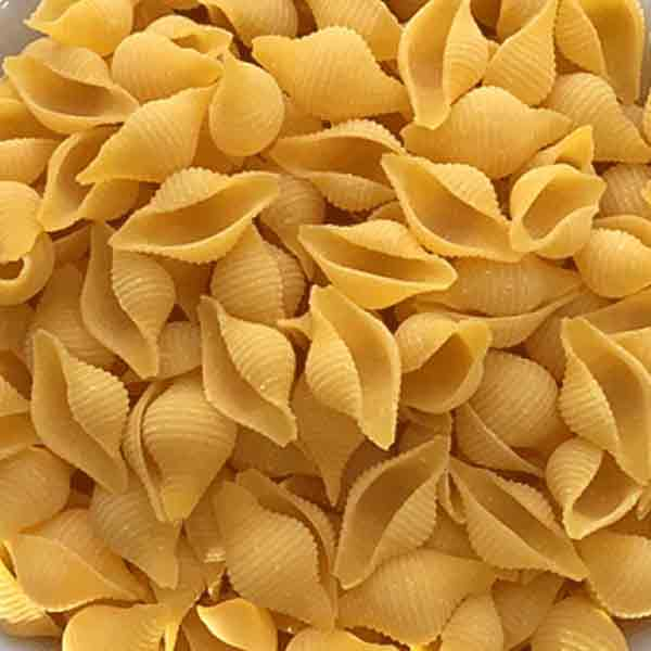 Corn & Rice Conchiglie (Organic) / 有機無麩質小貝殼粉