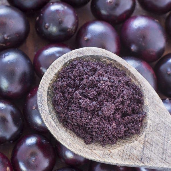 Acai Berry Powder (Organic & Freeze-Dried) / 有機凍乾巴西莓粉