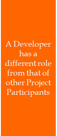 A Developer has a different role from that of other Project Participants