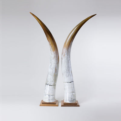 Omukama Horns - Extra Large Brown - oboralux
