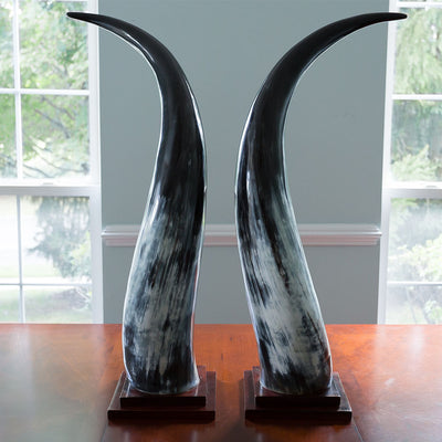 Omukama Horns - Medium Black - oboralux