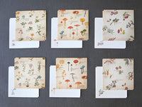 Picture book Style memo letter paper set with case / Plants