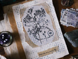 Lin Chia Ning / Dried Flower Stamp Set A  (set of 1)