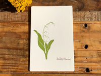 High Quality Botanical Garden Letterpress Postcard - Lily of the Valley