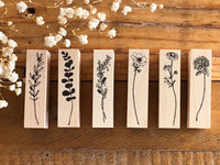 Kubominoki Original Botanical Rubber Stamp - Chamomile