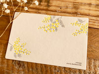 High Quality Botanical Garden Letterpress Postcard -Mimosa