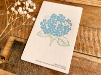 High Quality Botanical Garden Letterpress Postcard - Hydrangea
