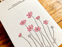 High Quality Botanical Garden Letterpress Postcard - Chocolate Cosmos
