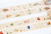 MT ex Encyclopedia Japanese Washi Tape / 30mm wide Sea Creatures, Minerals and Birds at your choice