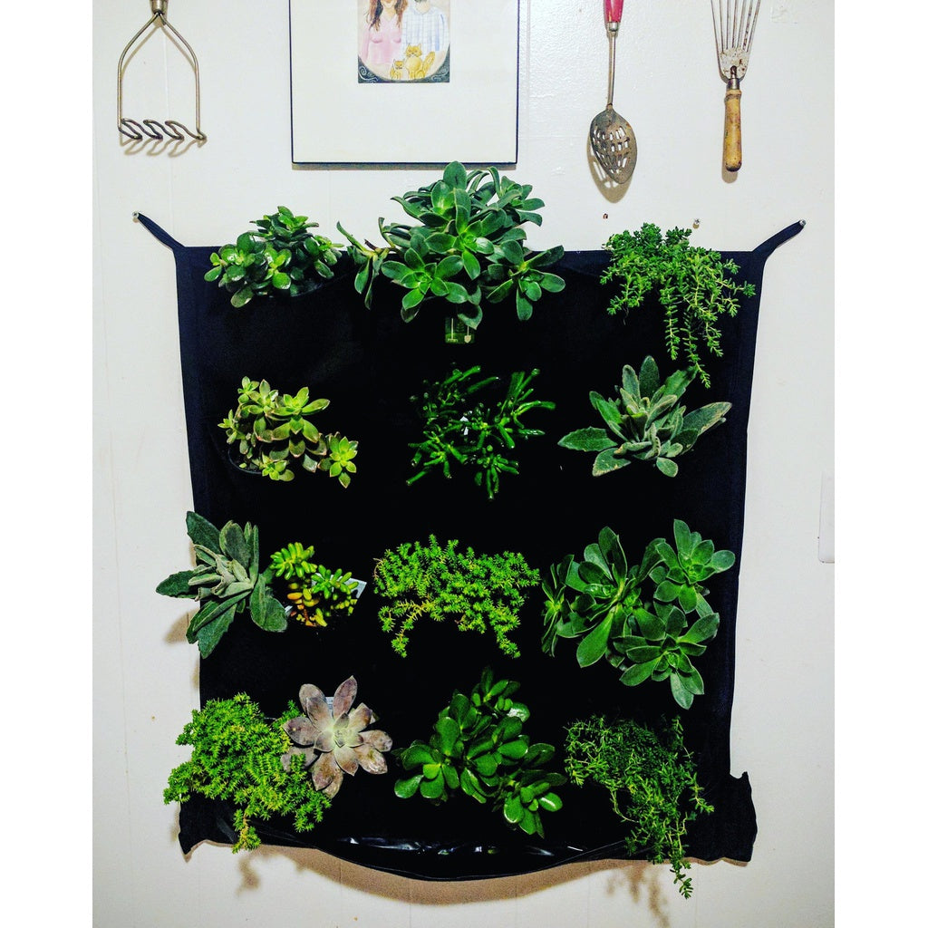 Vertical Living Wall 12 Pocket Indoor Waterproof Vertical Living Wall Planter