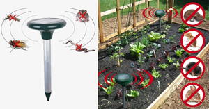 Smart Solar Powered Pest Repeller + Free Shipping
