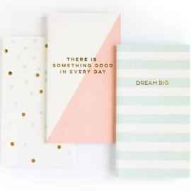 Dream Big Pastel Mini Notebooks