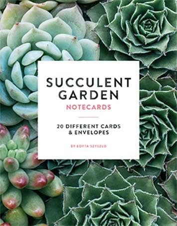 Succulent Garden Box Greeting Cards