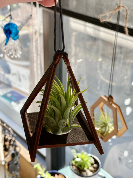 Triangle Air Plant Holder