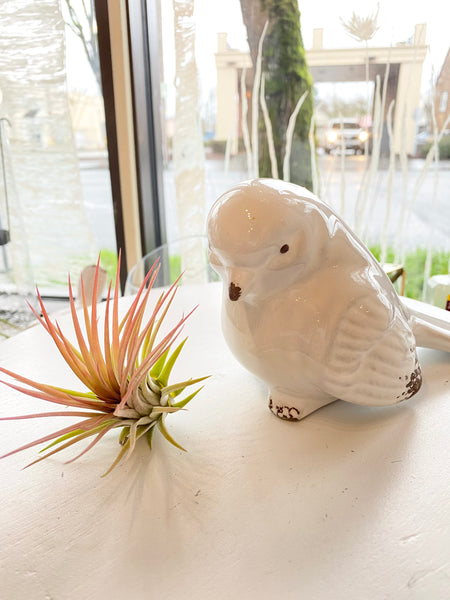 White Ceramic Bird Figurine