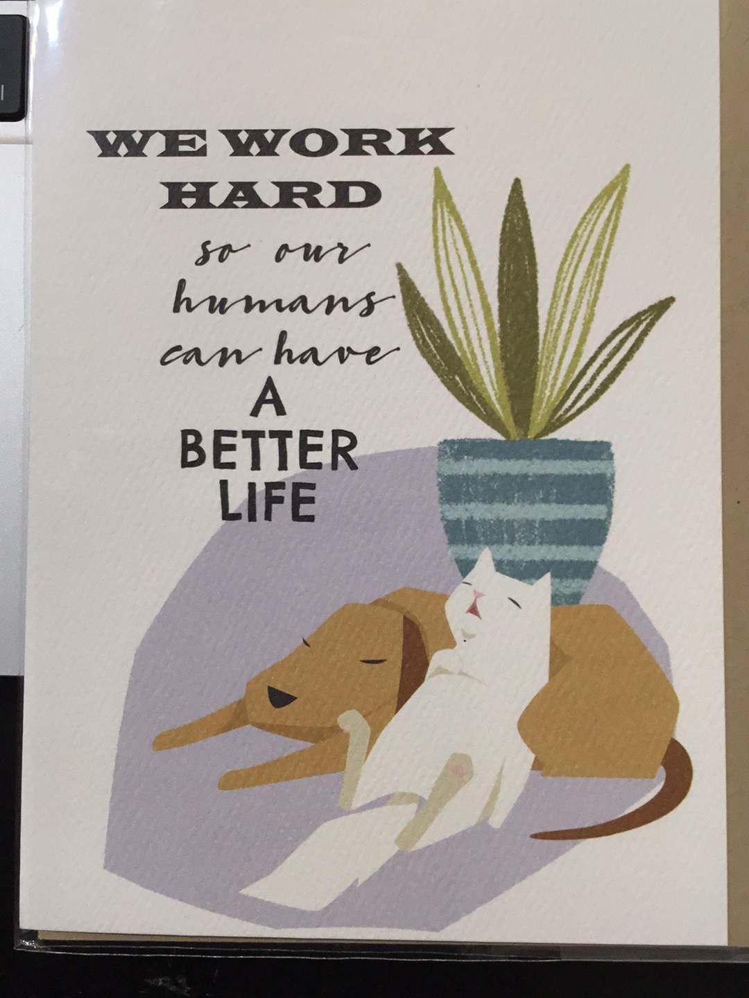 We work hard birthday card