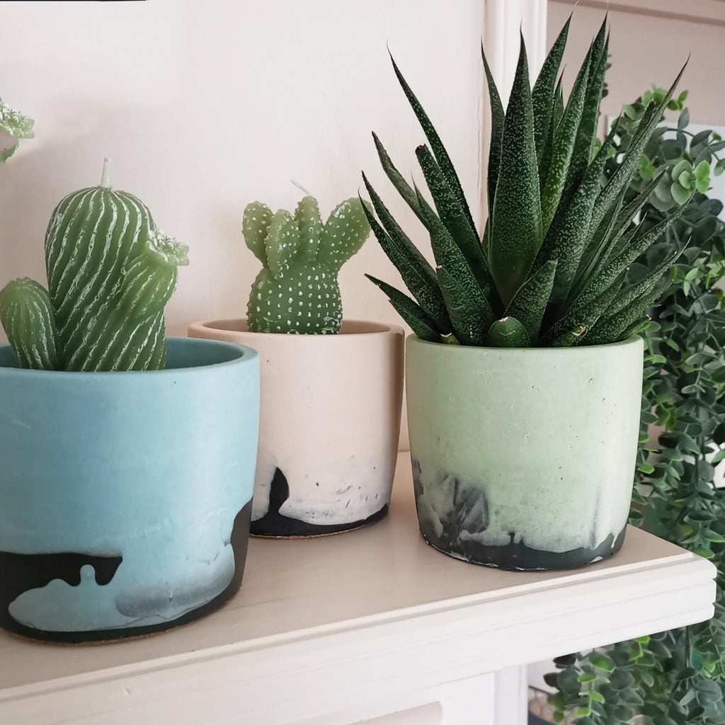 Pastel Ombre Plant Pot for indoor plants