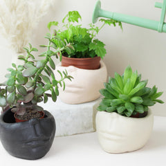Hand Cast Face Design Plant Pot for indoor plants