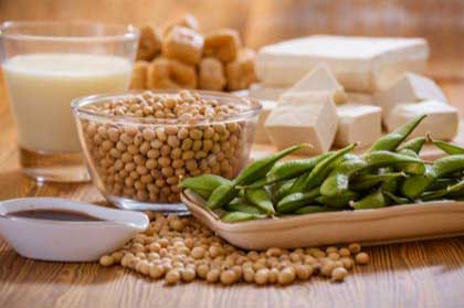 Soy foods and vegan protein