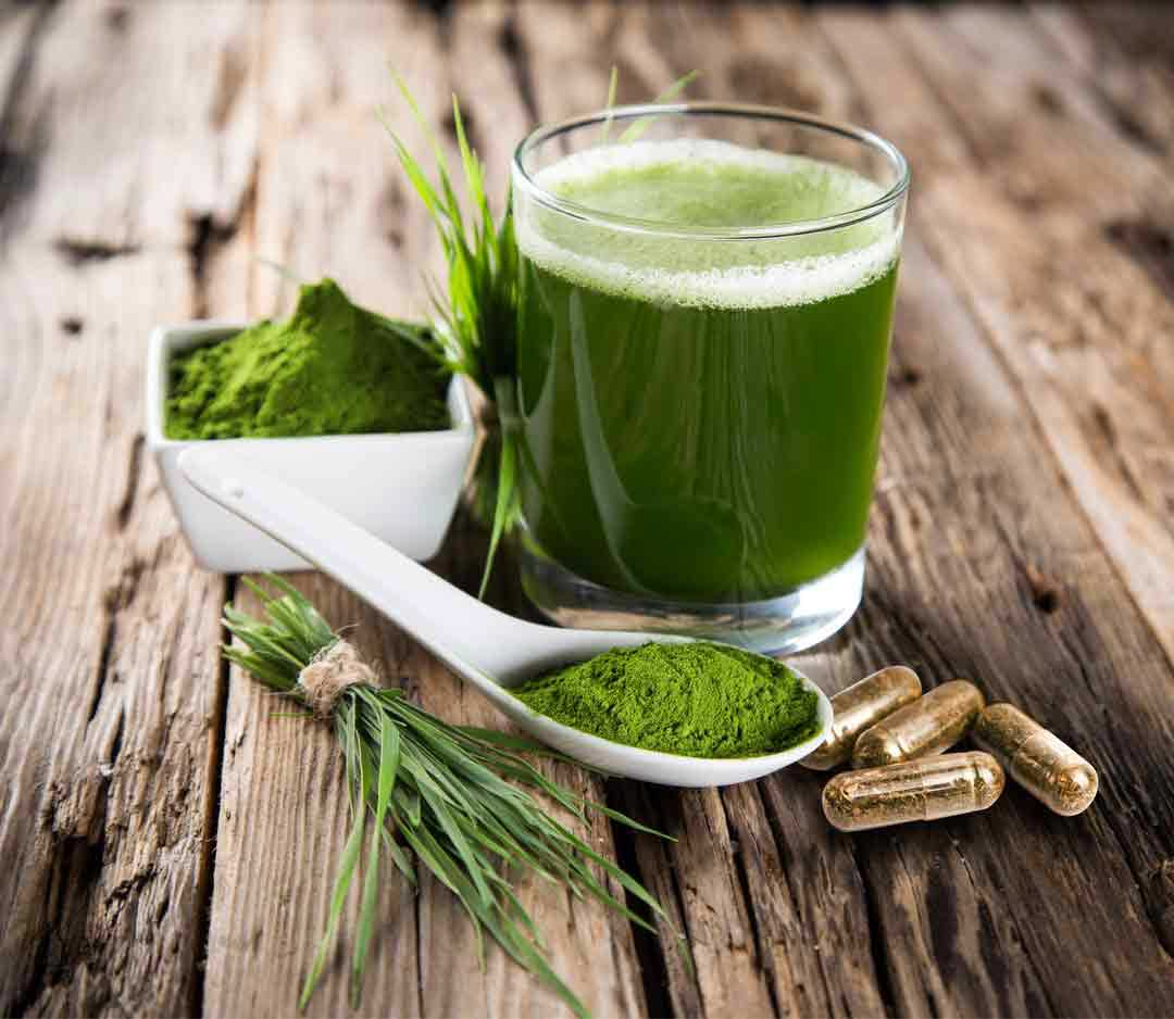 Spirulina algae superfood shot and supplement
