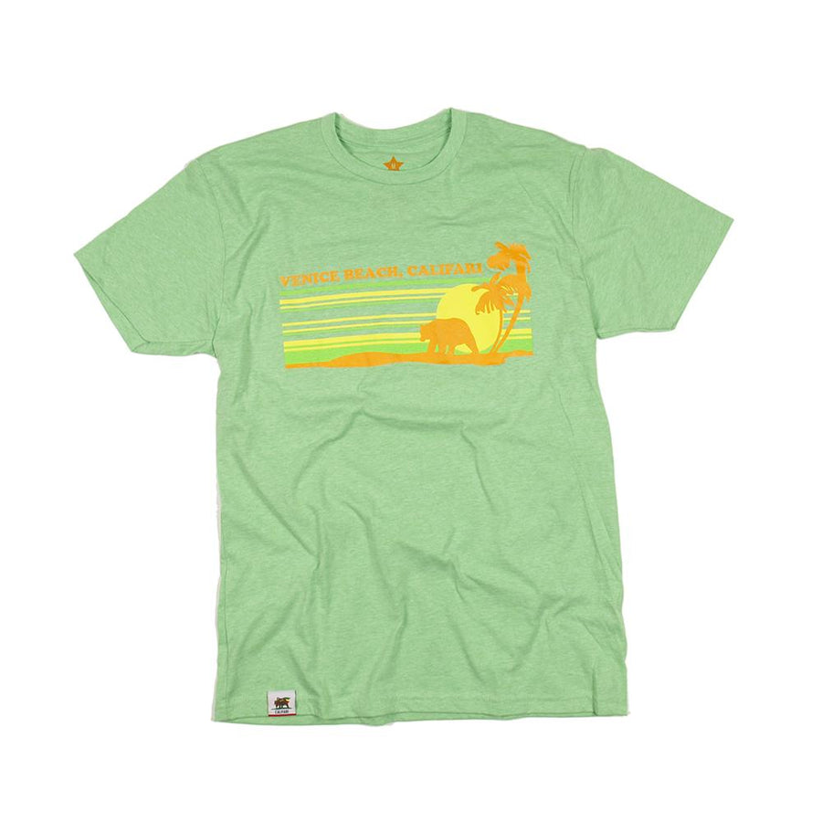 Venice Beach Bear in Apple Green