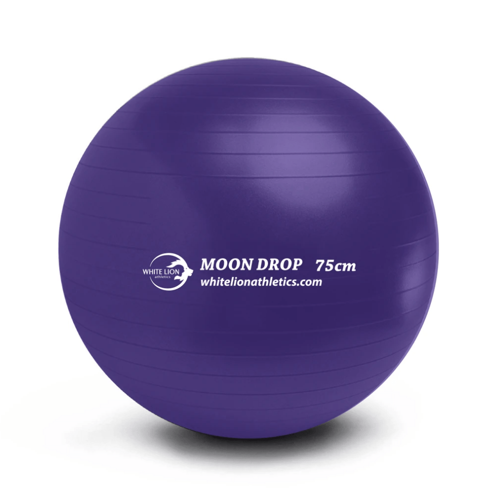 White Lion Stability Ball 75cm