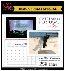 Cats I Met in Portugal - 2020 Wall Photo Calendar