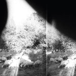 Godspeed You! Black Emperor - Asunder, Sweet And Other Distress 180g LP