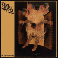 Black Curse - Endless Wound LP